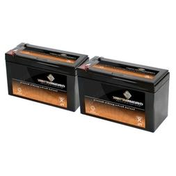 2 X 12v 9ah Sealed Lead Acid Battery for Electic Scooter and