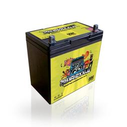 Green 12V 55AH 1400 Watts NB/T5 High Current Battery replace