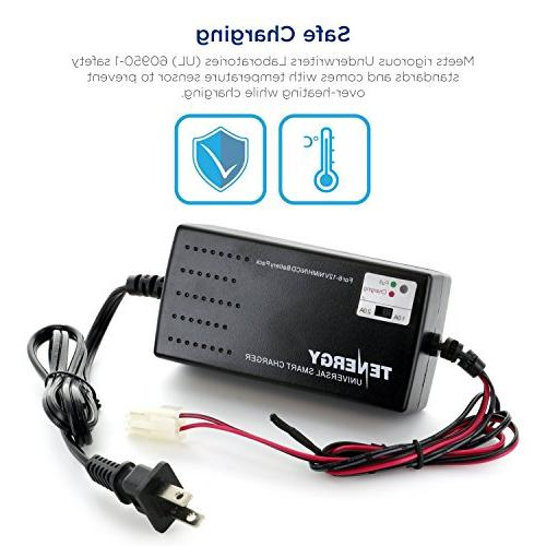 Tenergy Battery Packs, for Car, Airsoft Batteries, with Size Tamiya/Mini Connectors