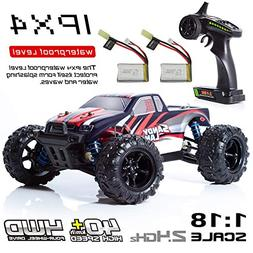 EXERCISE N PLAY RC Car, Remote Control Car, Terrain RC Cars,