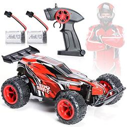 EXERCISE N PLAY Remote Control Car, 2.4Ghz 1:22 High Speed R